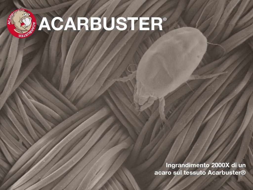 acaro-su-tessuto-Acarbuster-NO-CE